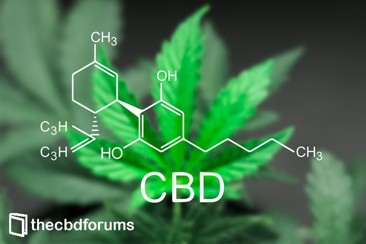 CBD oil takes off in Charleston