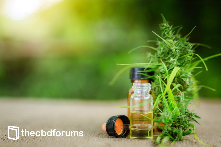 CBD Oil Blog